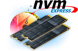 Dedicated servers based on NVMe SSD disk subsystem.